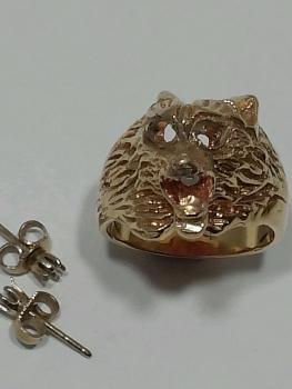 Photo of custom earrings Crown Point.