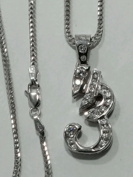 Photo of white gold necklace Crown Point.